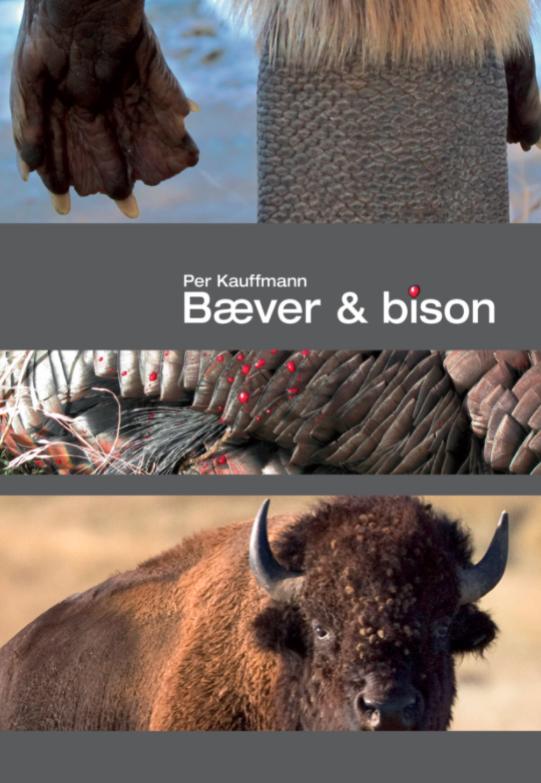 Bæver & Bison jagtbog